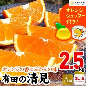 【付録付き】有田の清見  A品 2.5kg 2L〜S サイズ サイズミックス  秀品 フルーツ 季節限定 箱買 ご自宅用 お家時間 ご当地 食品 グルメ 柑橘 送料無料 mikannokai