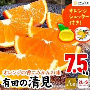 【付録付き】 有田の清見  A品 7.5kg 2L〜S サイズ サイズミックス  秀品 フルーツ 季節限定 箱買 ご自宅用 お家時間 ご当地 食品 グルメ 柑橘 送料無料 mikannokai