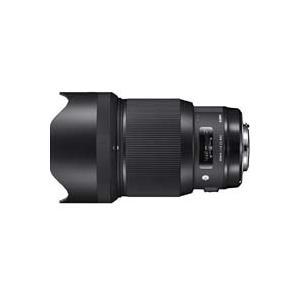 Artライン基準の卓越した光学性能。究極の85mm F1.4の誕生  ●究極のポートレート用レンズ ...