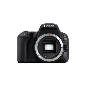 世界最軽量の小型ボディーに充実した基本性能を搭載 エントリーユーザー向けデジタル一眼レフカメラ  ●...