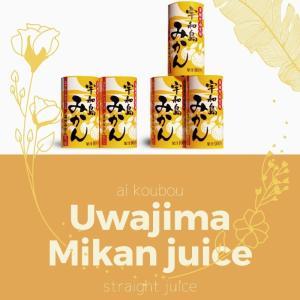メンタリストのDaigoも絶賛!! 愛媛県産 果汁100% 無添加 宇和島みかん 温州みかん 125ml×30本セット(2ケース) 合計60本 mikawaya-chana