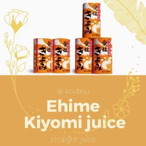 愛媛県産 果汁100% 無添加 きよみ 清見みかん 125ml×30本セット(2ケース) 合計60本 mikawaya-chana