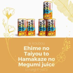愛媛県産 果汁100% 無添加 愛媛の太陽と浜風の恵み ミックスジュース 伊予柑 いよかん ポンカン 河内晩柑 きよみ 清見 125ml×30本セット(2ケース) 合計60本 mikawaya-chana
