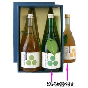 蓬莱泉 梅酒720ml 2本セット|mikawaya4783
