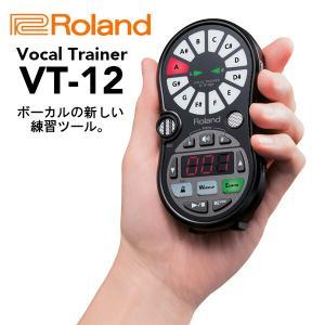 Roland ローランド Vocal Trainer VT-12-BK 送料無料|mikigakki