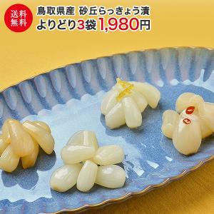 らっきょう 国産 鳥取県産 砂丘らっきょう漬け よりどり3袋 送料無料 ラッキョウ ご飯のお供