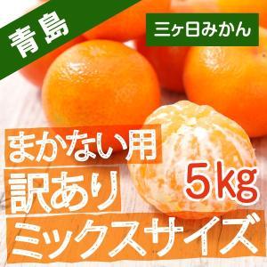 三ケ日みかん みかん 訳あり 5kg 青島みかん 蜜柑 ミックスサイズ 送料無料...