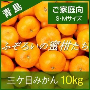 【青島みかん】三ケ日みかん ご家庭向け ふぞろいの蜜柑たち ...