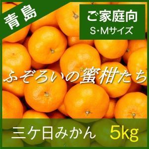 【青島みかん】三ケ日みかん ご家庭向け ふぞろいの蜜柑たち S/Mサイズ 5kg