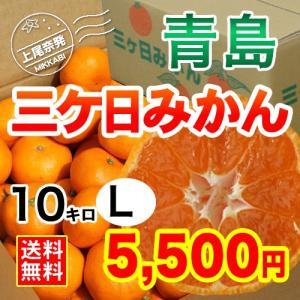 三ケ日みかん贈答用青島Lサイズ(10kg)|mikkabimikan