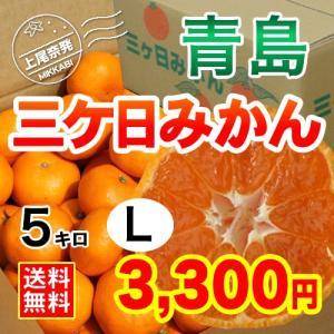 三ケ日みかん贈答用青島Lサイズ(5kg)|mikkabimikan