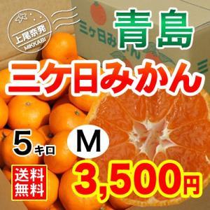 三ケ日みかん贈答用青島Mサイズ(5kg)|mikkabimikan