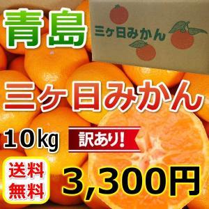三ケ日みかん 青島 訳ありみかん (不揃い)(10kg)...