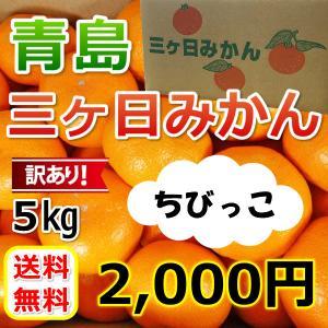 三ケ日みかん青島訳ありみかん ちびっこ(SS)(5kg)|mikkabimikan