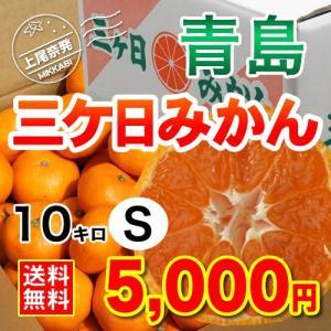 三ケ日みかん贈答用青島Sサイズ(10kg)|mikkabimikan