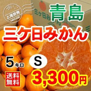三ケ日みかん贈答用青島Sサイズ(5kg)|mikkabimikan