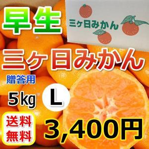 みかん 三ケ日みかん 贈答 用早生 L サイズ(5kg)|mikkabimikan