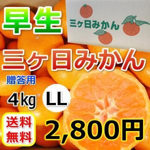 みかん 三ケ日みかん 贈答 用早生 LL サイズ(4kg) mikkabimikan