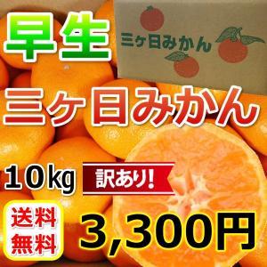 みかん 三ケ日みかん 早生 訳あり (不揃い・キズ)(10kg)|mikkabimikan
