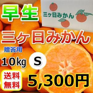 みかん 三ケ日みかん 贈答 用早生 S サイズ(10kg)|mikkabimikan