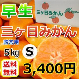 みかん 三ケ日みかん 贈答用 早生 S サイズ(5kg) mikkabimikan