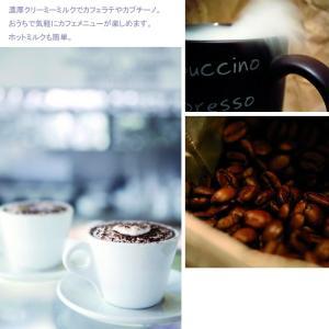 ラッピング無料[プリンセス]PRINCESS【Milk Frother Pro】ミルクフローサー プロ(全自動 ミルクフォーマー)|mikke|05