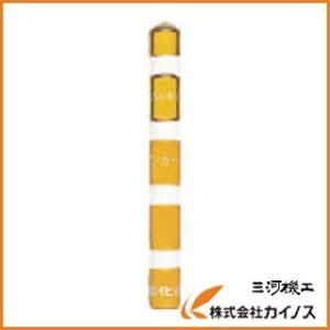 サンコー 旭化成ケミカルMUアンカー(打込み...の関連商品10