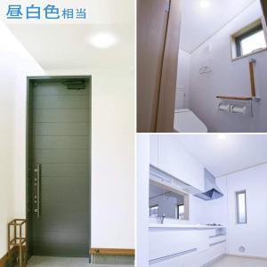 アイリスオーヤマ LED シーリングライト 小型 100W相当 昼白色 750lm SCL7N-E|million-got