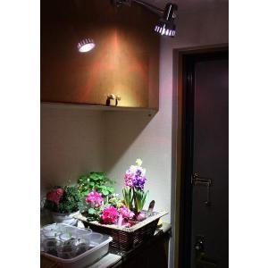 YC 観賞用 2019最新型 5w LED植物ライト 植物育成 スポットライト 口金E26 白/赤660nmLED使用 店舗照明 水耕栽培 million-got