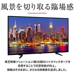 bizz(ビズ) フルハイビジョン液晶テレビ 外付けHDD裏番組録画対応 (50v型) HB-5032HD million-got