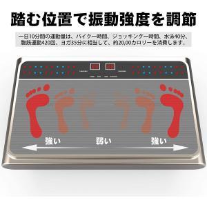 VLOXO 振動マシン フィットネスマシン 3d振動マシン ぶるぶるマシン 振動調節99段階 シェイカー式 静音 産後 ダイエット 音楽プレ|million-got
