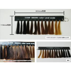 頭髪検査用人毛カラーレベルスケール 服務指導・生活指導・生徒指導・就業規則に便利|million-got