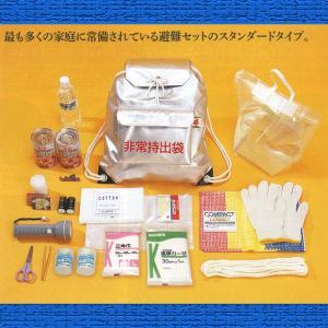 避難21点セット 【 防災グッズ / 緊急避難セット 】|minakami119