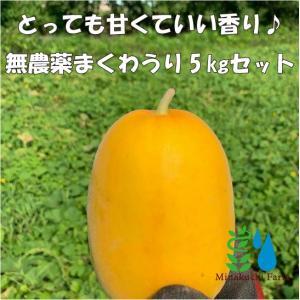 【有機JAS認証】農家直送!近江伝統野菜 無農薬 まくわうりセット|minakuchi-farm