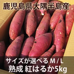 鹿児島のさつまいも「べにはるか」5kg サイズが選べる送料無...