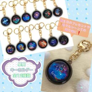 星座キーホルダー/zodiac sign 12種類 あなたの星座は?誕生日プレゼント