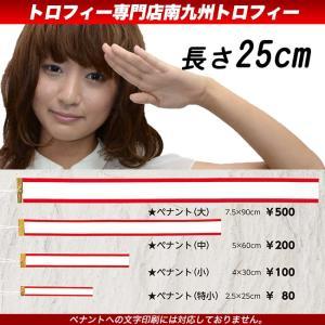 紅白ペナント(特小)長さ25cm トロフィー・優勝カップ用