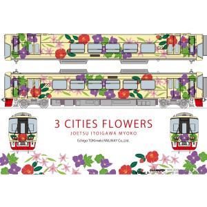 ホビーセンターカトー 16011-9 えちごトキめき鉄道「3市の花号」(ET122-8)  Nゲージ|minato-m