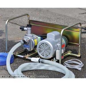 ミナト 1インチ ベルト掛けポンプ 単相100V1馬力モーター+サクションホース4m付きセット [大水量型 高揚程型 散水ポンプ 灌水ポンプ]|minatodenki