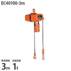 ニッチ 懸垂式 電気チェーンブロック EC40100-3m (標準揚程3m/三相200V/定格荷重1t/2点押ボタン式)|minatodenki