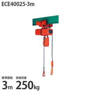 ニッチ 電動横行式 電気チェーンブロック(電動クレーン用) 4点押ボタン式 三相200V ECE40025-3m (250kg/標準揚程3m/操作電圧24V)|minatodenki