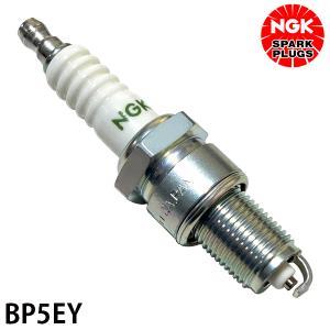 チャンピオン(CHAMPION) スパークプラグ N9YC|minatodenki