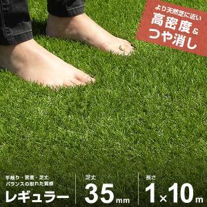 リアル人工芝 ロール 1m×10m レギュラー仕...の商品画像