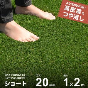 リアル人工芝 ロール 1m×2m ショート仕様 (芝丈20mm) AT-ST1-2002 [人工芝 芝生 FIFA認定工場] minatodenki