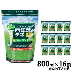 カネコ種苗 西洋芝のタネ Jガーデングラス/万能タイプ 12袋セット|minatodenki