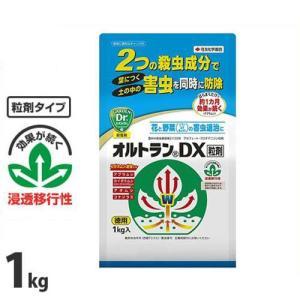 住友化学園芸 園芸用 殺虫剤 オルトランDX粒剤 1kg [花 野菜 害虫 防除]|minatodenki