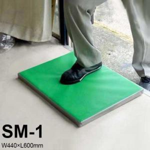南栄工業 除菌・消毒マット SM-1 マット単品 (W440×L600mm)|minatodenki