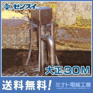 ゼンスイ ウォータークリーナー 『大正30M』 (100V30W)|minatodenki