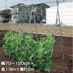 つるもの栽培セット TR-20 (幅70〜120cm×高1.8m : 奥行き2m)|minatodenki