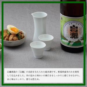 日本酒 白瀧酒造 白瀧 純米 1800ml|minatoya|05